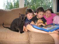 pd kitten and kids