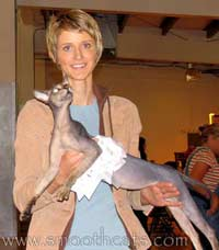 The first male Russian Peterbald to become a Supreme Grand Champion in TICA